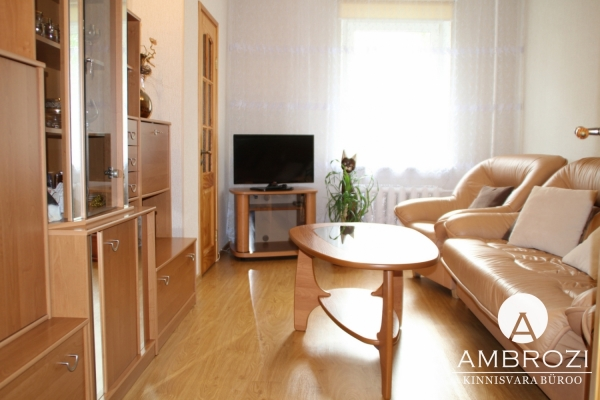Excellent offer! Fully renovated 2-room apartment with garage, Jaaniku 61
